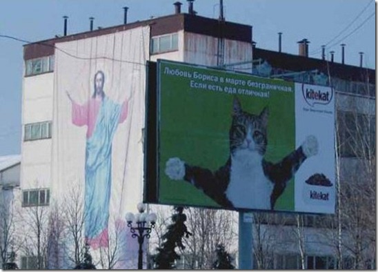 jesus and cat